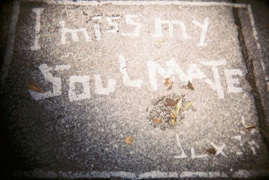 I Miss my Soulmate, by PhoenixLily via flickr